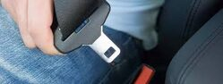 safety belt first Klik